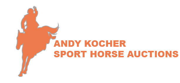 Andy Kocher Sport Horse Auctions